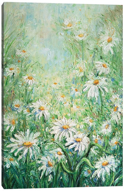 Summer Daisies Canvas Art Print