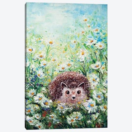 Hedgehog In Daisies Canvas Print #VLK60} by Vlada Koval Canvas Artwork