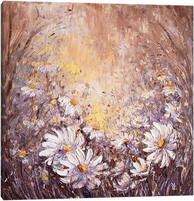 Daisies Canvas Art Print