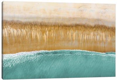 Above the Beach Canvas Art Print