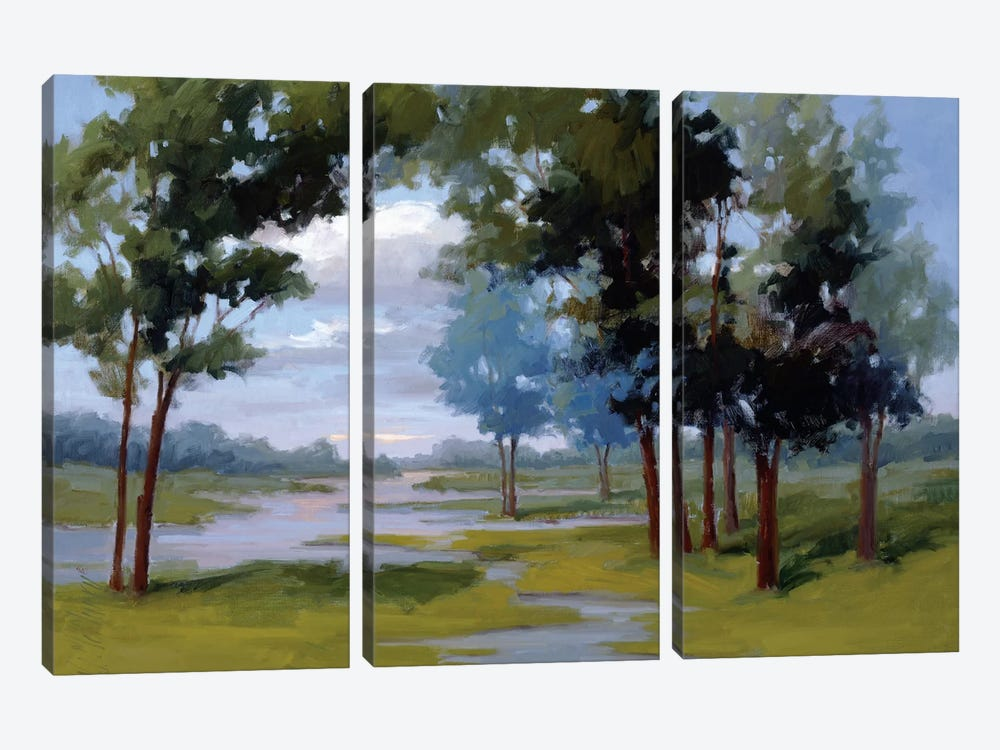 Wandering Water by Vicki McMurry 3-piece Canvas Wall Art