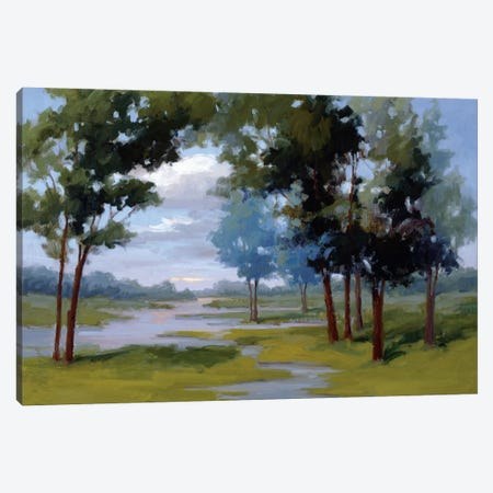 Wandering Water Canvas Print #VMC3} by Vicki McMurry Canvas Wall Art