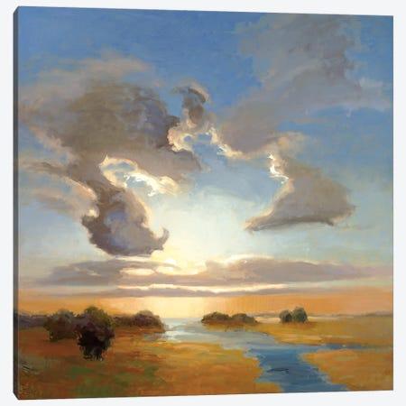 Yielding Light Canvas Print #VMC4} by Vicki McMurry Canvas Print