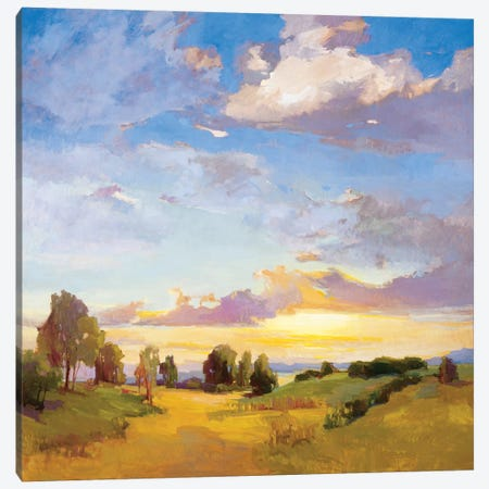 Golden Horizons Canvas Print #VMC5} by Vicki McMurry Art Print