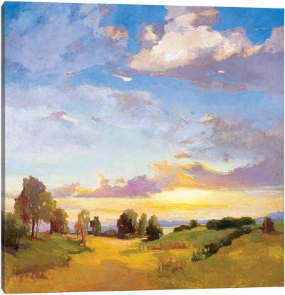 Golden Horizons Canvas Art Print