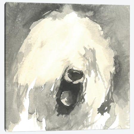 Sepia Modern Dog IX Canvas Print #VMD10} by A Very Modern Dog Canvas Art Print