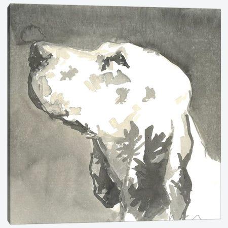 Sepia Modern Dog V Canvas Print #VMD11} by A Very Modern Dog Canvas Art Print