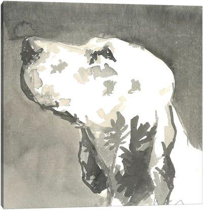 Sepia Modern Dog V Canvas Art Print