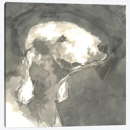 Sepia Modern Dog I Canvas Print #VMD6} by A Very Modern Dog Canvas Wall Art