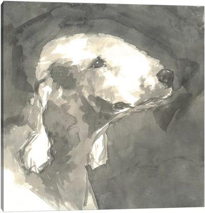 Sepia Modern Dog I Canvas Art Print