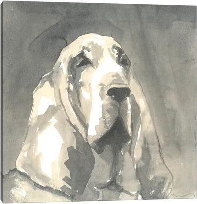 Sepia Modern Dog II Canvas Art Print