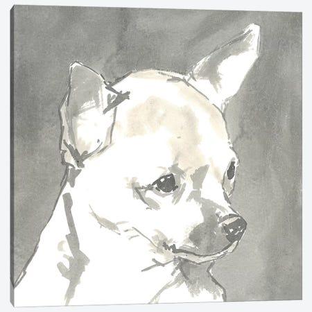 Sepia Modern Dog III Canvas Print #VMD8} by A Very Modern Dog Art Print