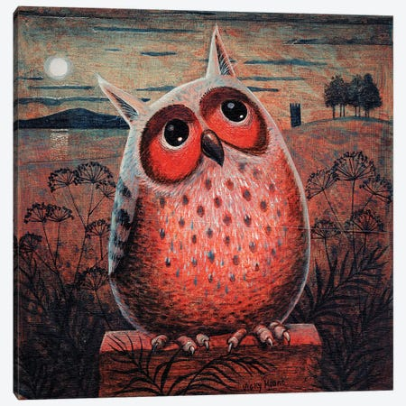 Owl Canvas Print #VMN100} by Vicky Mount Canvas Artwork