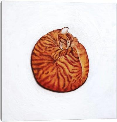Round Peg Canvas Art Print