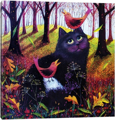 Shadow In The Woods Canvas Art Print