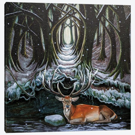 Solum Canvas Print #VMN156} by Vicky Mount Canvas Wall Art