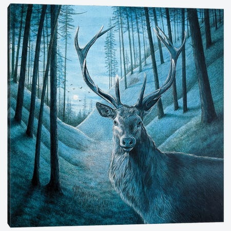 Blue Stag Canvas Print #VMN159} by Vicky Mount Canvas Art Print
