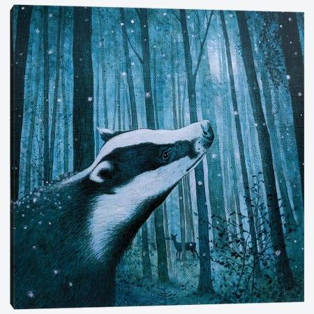 Beyond The Wild Wood Canvas Print #VMN18} by Vicky Mount Art Print