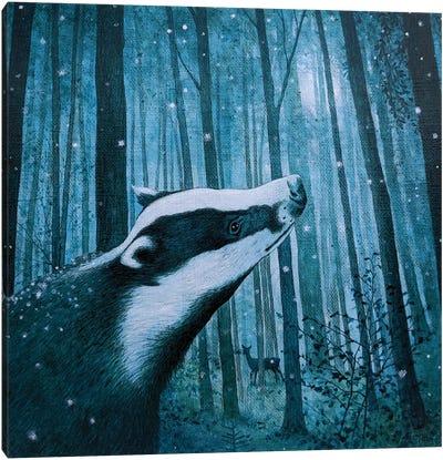 Beyond The Wild Wood Canvas Art Print