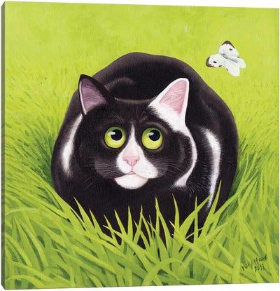 Cat & Cabbage White Canvas Art Print