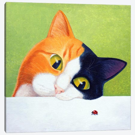 Cat With Ladybird Canvas Print #VMN28} by Vicky Mount Canvas Wall Art