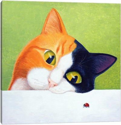 Cat With Ladybird Canvas Art Print