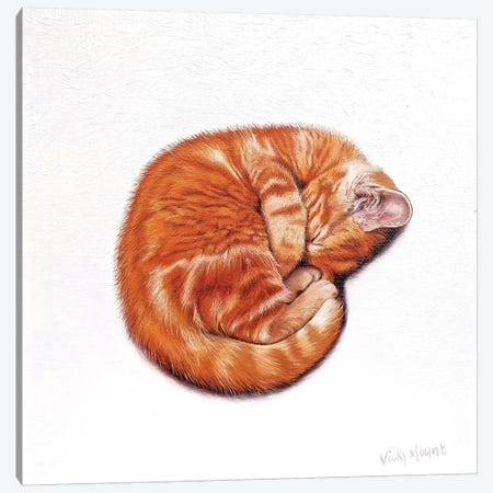 Clementine Canvas Print #VMN32} by Vicky Mount Art Print
