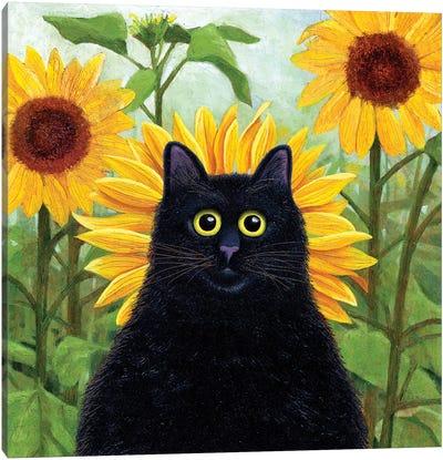 Dan De Lion With Sunflowers Canvas Art Print