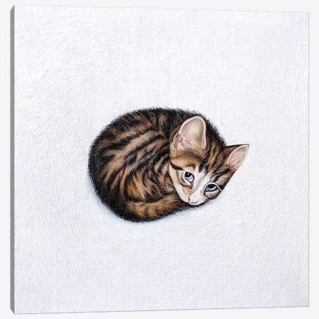 Kitkat Canvas Print #VMN73} by Vicky Mount Canvas Art Print