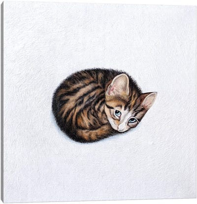 Kitkat Canvas Art Print