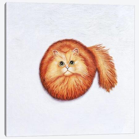 Mira 3-Piece Canvas #VMN85} by Vicky Mount Art Print