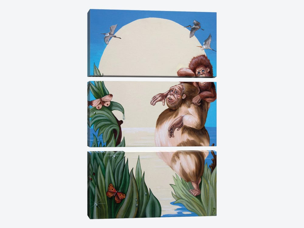 Darwin by Victor Molev 3-piece Canvas Wall Art