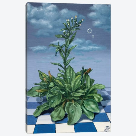 Grass Canvas Print #VMO38} by Victor Molev Canvas Art