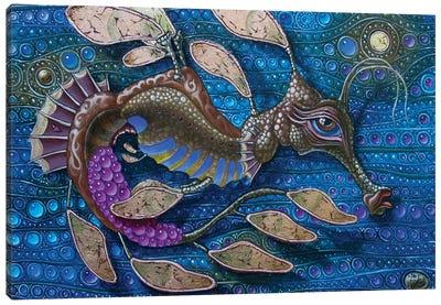 Leafy Seadragon Canvas Art Print