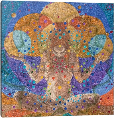 Mandalla Canvas Art Print