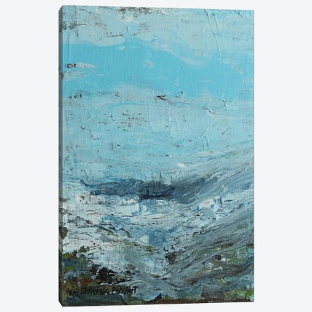 Overcast Canvas Print #VNB55} by Vian Borchert Canvas Wall Art