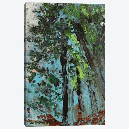 Trees Canvas Print #VNB68} by Vian Borchert Canvas Wall Art