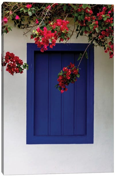 Bahia Blue Window Canvas Art Print