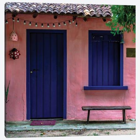 Pink And Blue Canvas Print #VNC203} by Alexandre Venancio Canvas Artwork