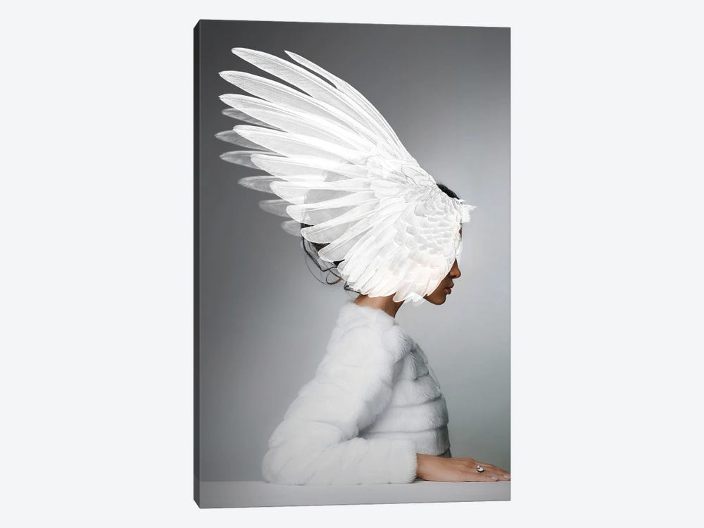 Woman And Wings by Alexandre Venancio 1-piece Canvas Wall Art