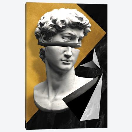 Desconstructed Masterpiece David Canvas Print #VNC276} by Alexandre Venancio Canvas Art