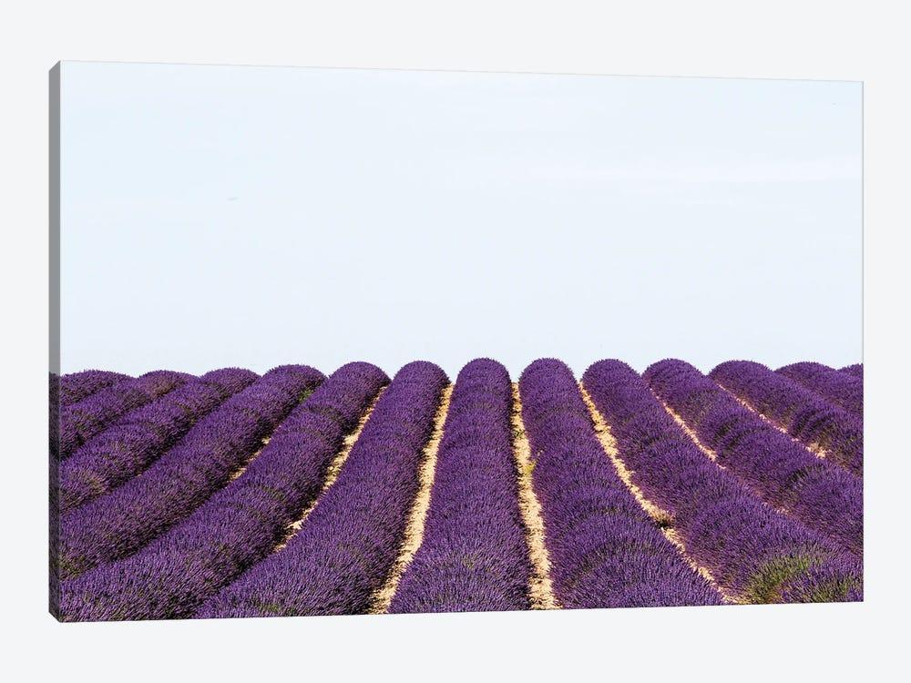 France Provence Lavande Field Pair I by Alexandre Venancio 1-piece Canvas Print