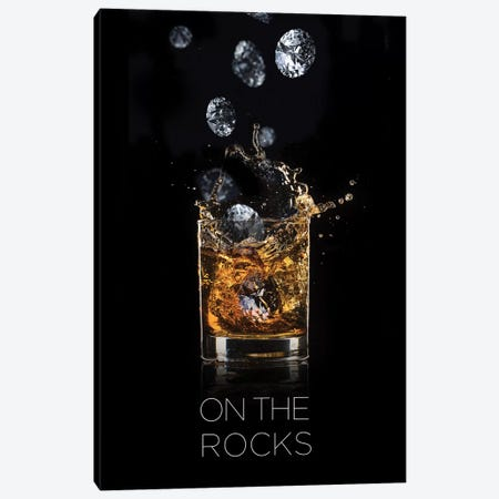 On The Rocks Canvas Print #VNC74} by Alexandre Venancio Art Print