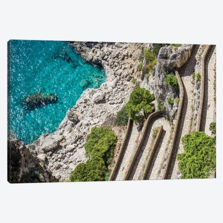 The Path Canvas Print #VNC87} by Alexandre Venancio Canvas Wall Art