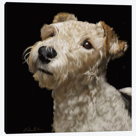 Fox Terrier Canvas Print #VNE100} by Vicki Newton Canvas Print