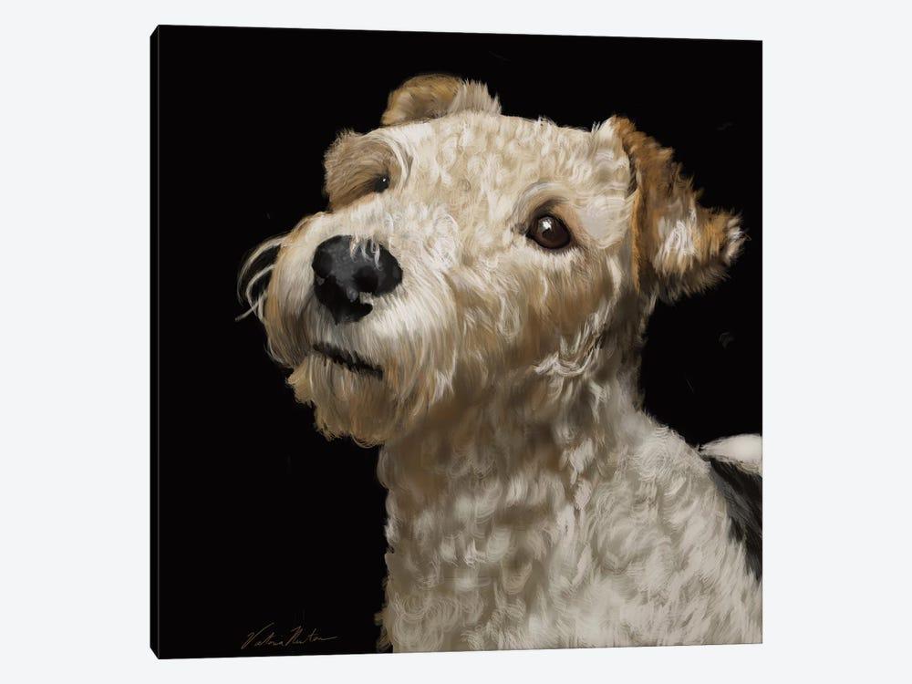 Fox Terrier by Vicki Newton 1-piece Canvas Art