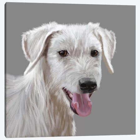 Canaan Dog Canvas Print #VNE107} by Vicki Newton Canvas Artwork