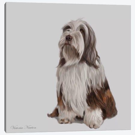 Bearded Collie Canvas Print #VNE10} by Vicki Newton Canvas Wall Art