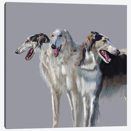 Russian Wolfhound Trio Canvas Print #VNE117} by Vicki Newton Canvas Art Print