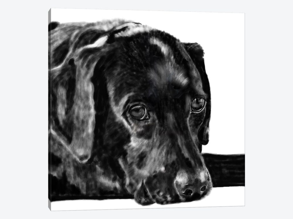 Black Lab Pencil by Vicki Newton 1-piece Art Print